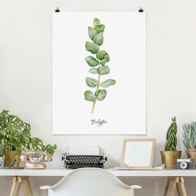 Poster - Aquarell Botanik Eukalyptus - Hochformat 3:4