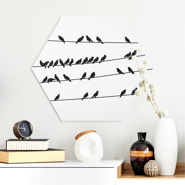 Hexagon Bild Forex - Vogelschar