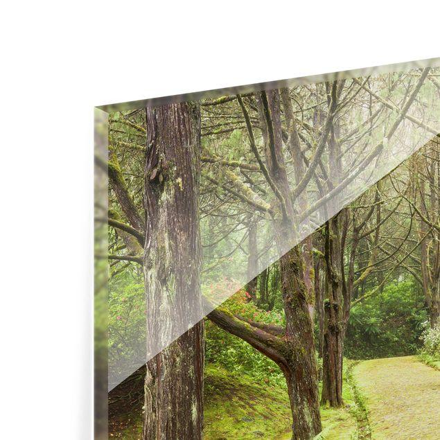 Glas Spritzschutz - Moosbewachsene Straße - Quadrat - 1:1