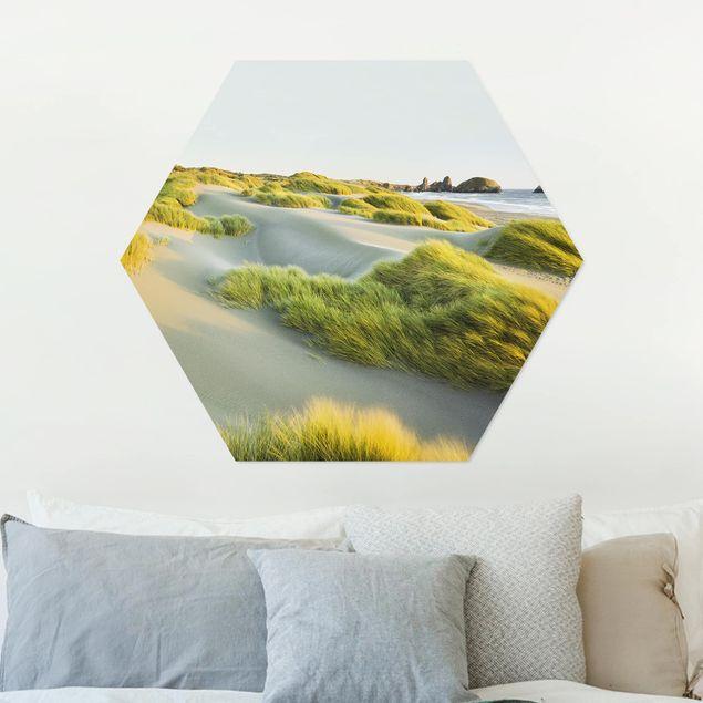 Hexagon Bild Alu-Dibond - Dünen und Gräser am Meer