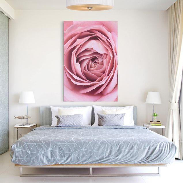 Leinwandbild - Rosa Rosenblüte - Hochformat 3:2