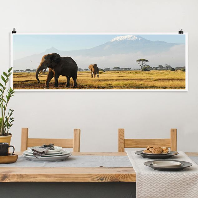 Poster - Elefanten vor dem Kilimanjaro in Kenya - Panorama Querformat
