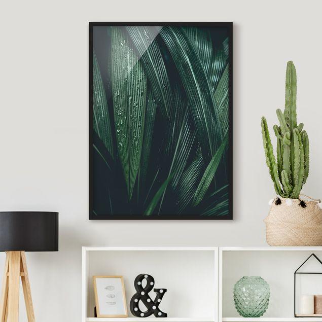 Bild mit Rahmen - Grüne Palmenblätter - Hochformat 3:4