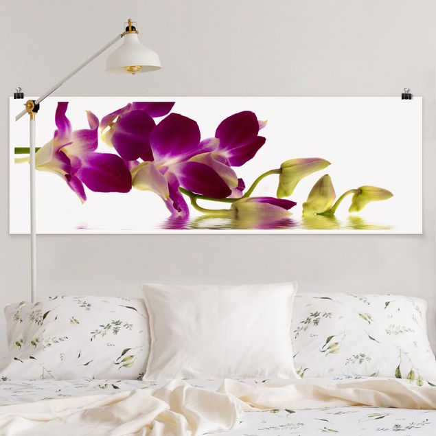 Poster - Pink Orchid Waters - Panorama Querformat