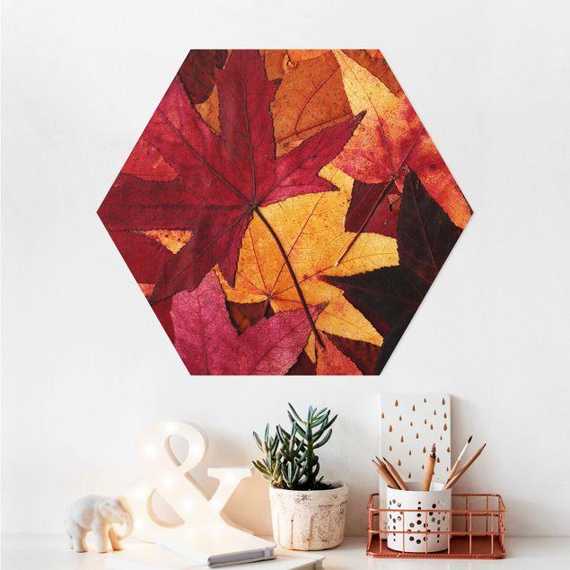 Hexagon Bild Alu-Dibond - Coloured Leaves