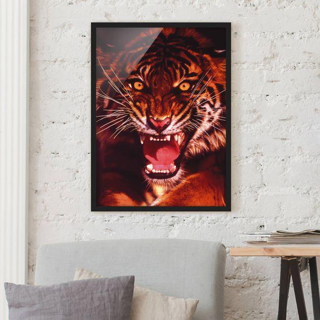 Bild mit Rahmen - Wilder Tiger - Hochformat 3:4