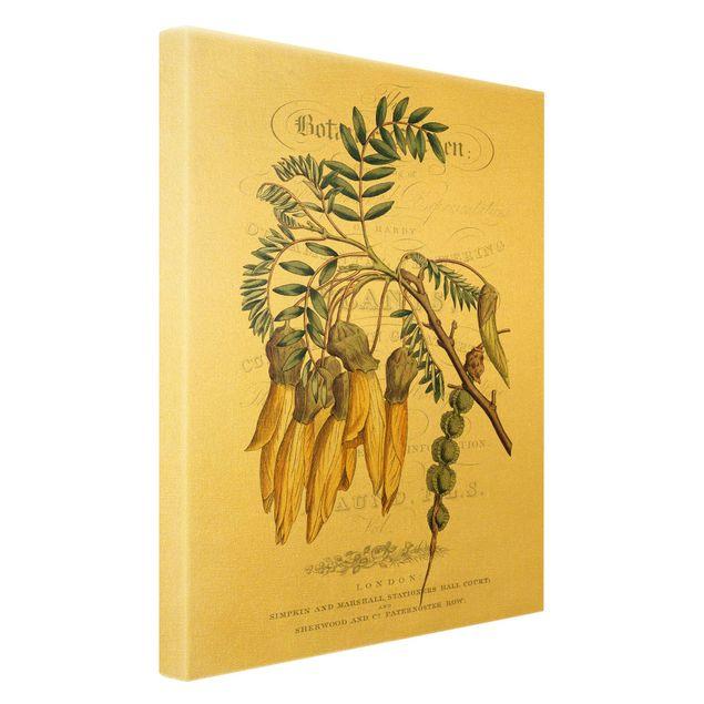 Leinwandbild Gold - Botanisches Tableau - Schnurbaum - Hochformat 2:3