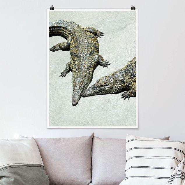 Poster - Crocodile Romance - Hochformat 3:4