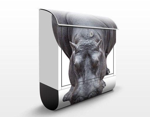 Briefkasten mit Zeitungsfach - Flußpferd - Briefkasten mit Tiermotiv
