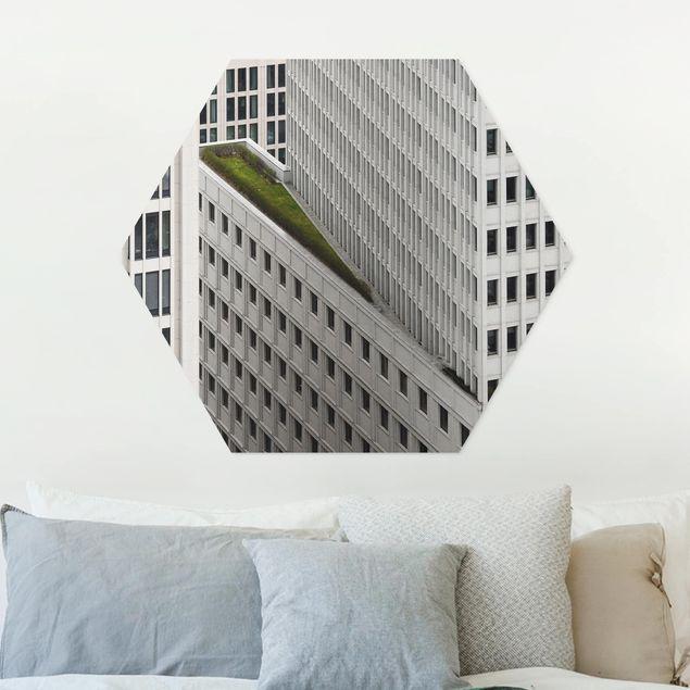 Hexagon Bild Forex - Das grüne Element
