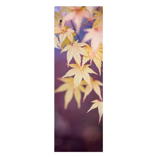 Leinwandbild - Herbstlicher Ahorn - Panorama Hochformat 1:3