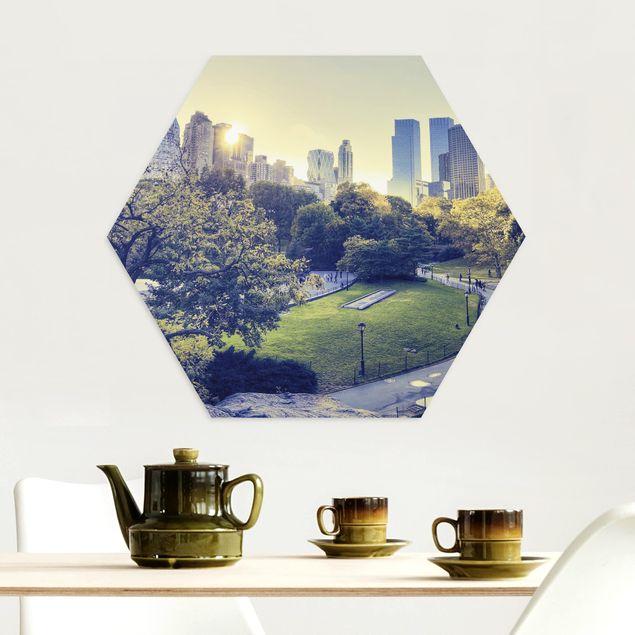 Hexagon Bild Alu-Dibond - Peaceful Central Park