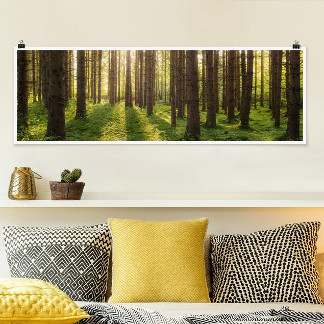 Poster - Sonnenstrahlen in grünem Wald - Panorama Querformat