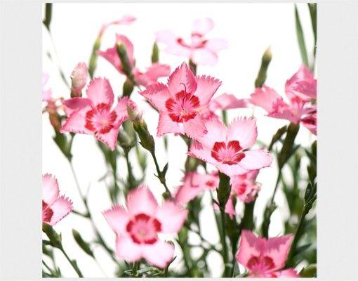 Beistelltisch - Pink Flowers