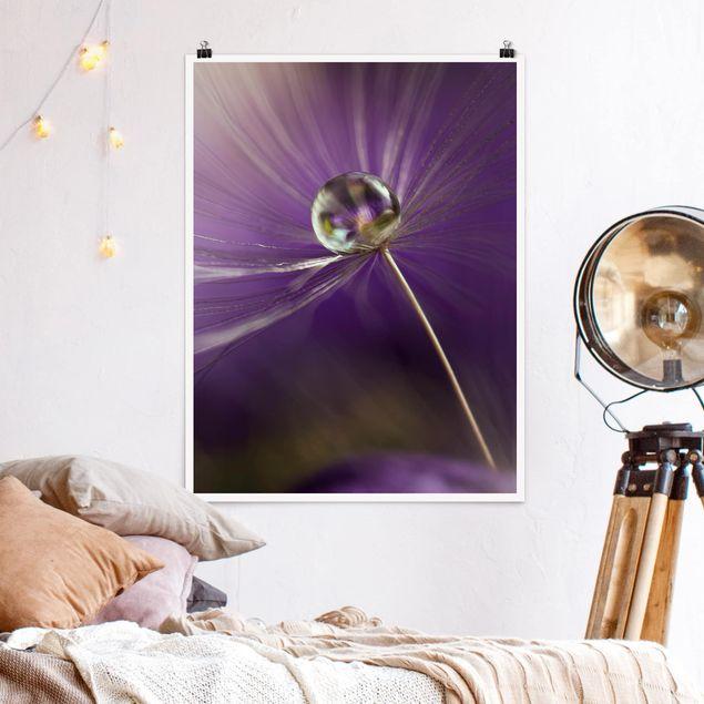 Poster - Pusteblume in Violett - Hochformat 3:4