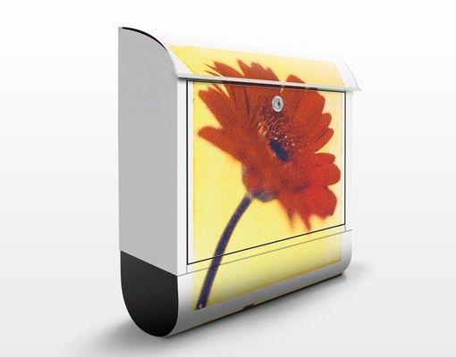Briefkasten mit Zeitungsfach - Only You - Blumen Rot
