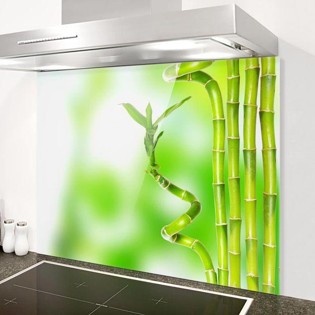 Glas Spritzschutz - Grüner Bambus - Querformat - 4:3