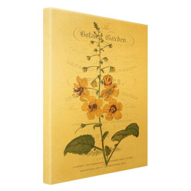 Leinwandbild Gold - Botanisches Tableau - Königskerze - Hochformat 2:3