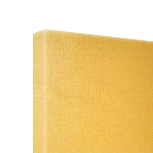 Leinwandbild Gold - Bison in den Highlands - Panorama 3:1