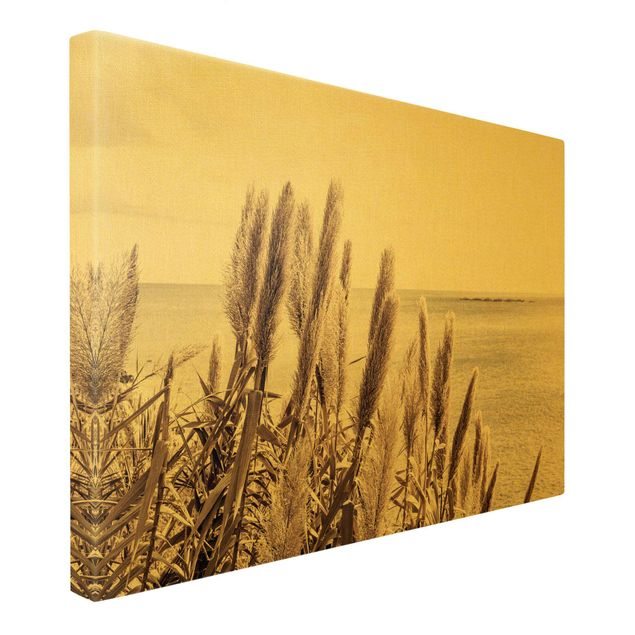 Leinwandbild Gold - Ein sonniger Tag auf Madeira - Querformat 3:2