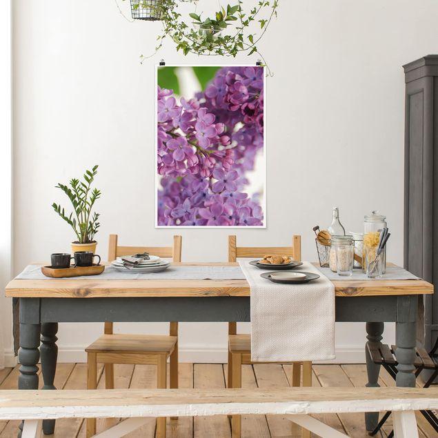Poster - Lovely Lilac - Hochformat 3:2