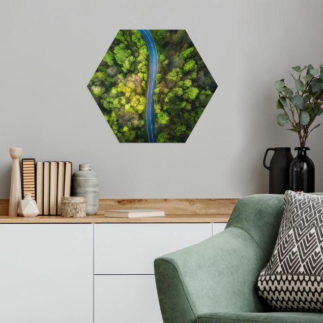 Hexagon Bild Alu-Dibond - Luftbild - Asphaltstraße im Wald