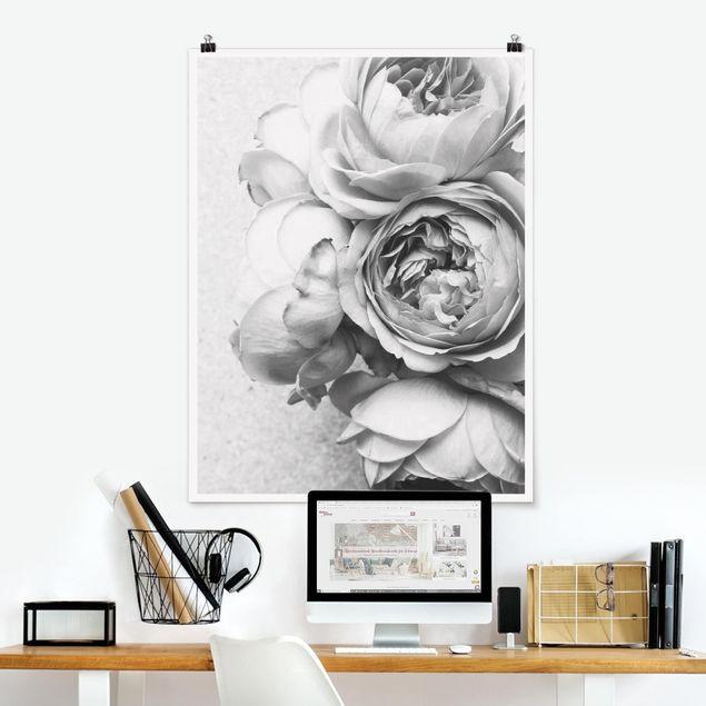Poster - Pfingstrosenblüten Schwarz Weiß - Hochformat 4:3