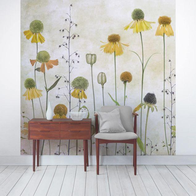 Fototapete - Zarte Helenium Blüten - Fototapete