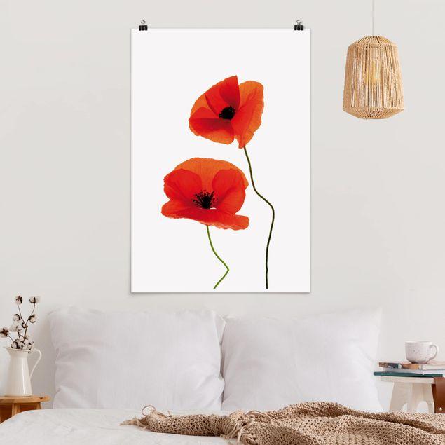 Poster - Charming Poppies - Hochformat 3:2
