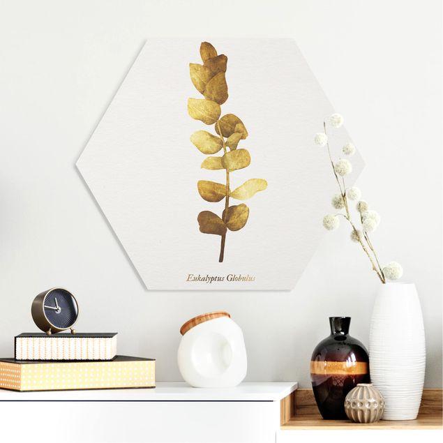 Hexagon Bild Forex - Gold - Eukalyptus