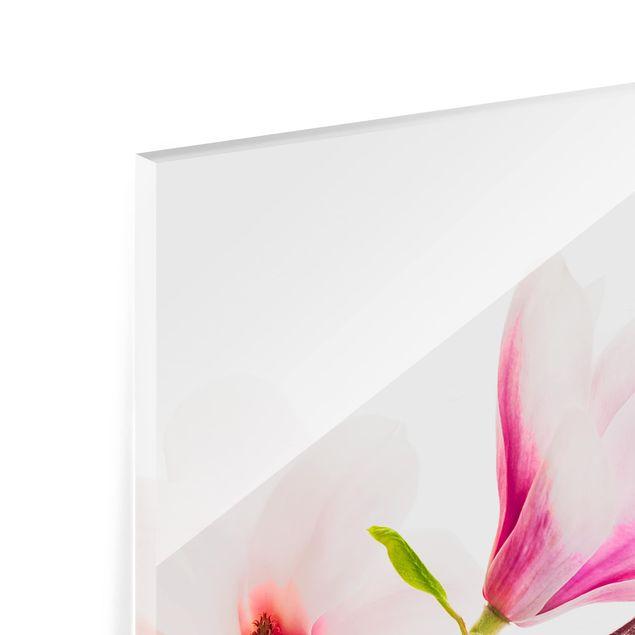 Glas Spritzschutz - Zarter Magnolienzweig - Quadrat - 1:1
