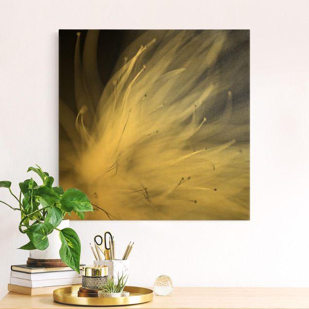 Leinwandbild Gold - Blütenstaub Schwarz-Weiß - Quadrat 1:1