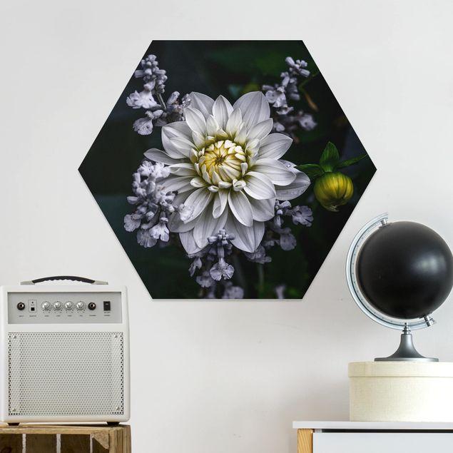Hexagon Bild Forex - Weiße Dahlie