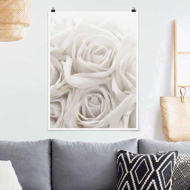 Poster - Weiße Rosen - Hochformat 3:4