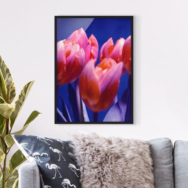 Bild mit Rahmen - Tulip Symphony - Hochformat 3:4