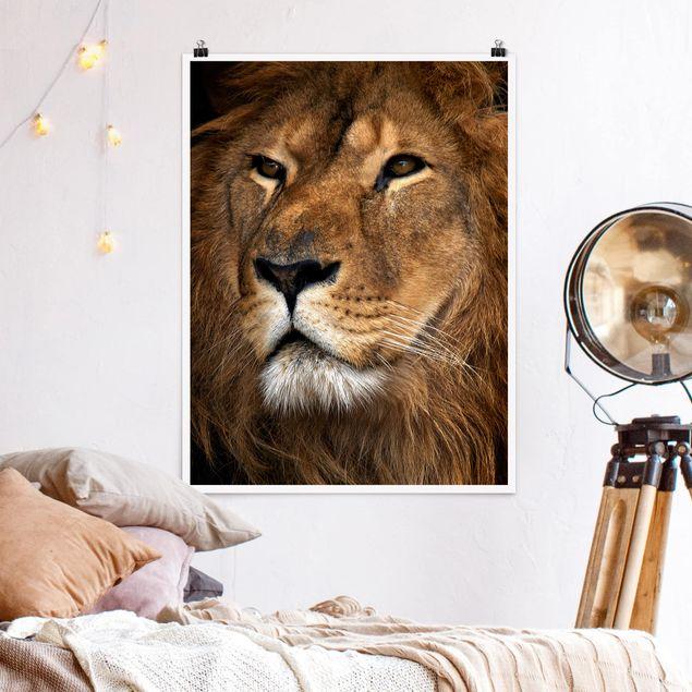 Poster - Löwenblick - Hochformat 3:4