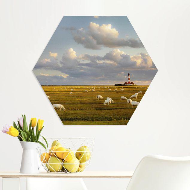 Hexagon Bild Forex - Nordsee Leuchtturm mit Schafsherde