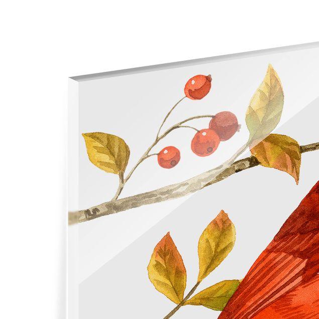 Glas Spritzschutz - Vögel und Beeren - Rotkardinal - Querformat - 4:3