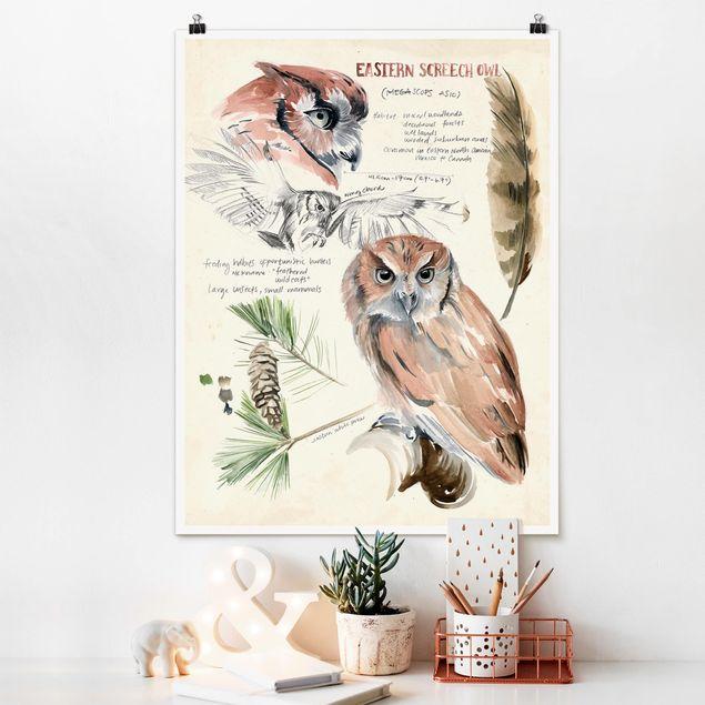 Poster - Wildnis Journal - Eule - Hochformat 3:4