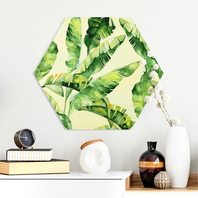 Hexagon Bild Forex - Bananenblätter Aquarell