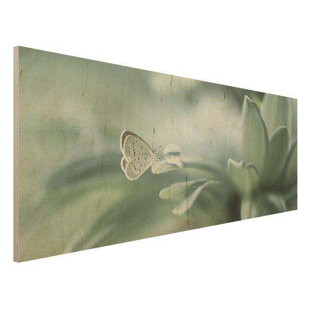 Holzbild - Schmetterling und Tautropfen in Pastellgrün - Panorama