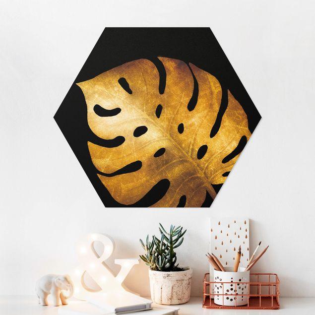 Hexagon Bild Forex - Gold - Monstera auf Schwarz