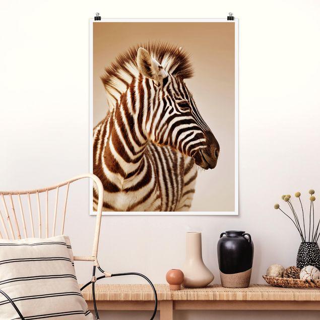Poster - Zebra Baby Portrait - Hochformat 3:4