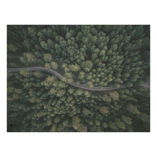 Holzbild - Luftbild - Waldstraße von Oben - Querformat 3:4