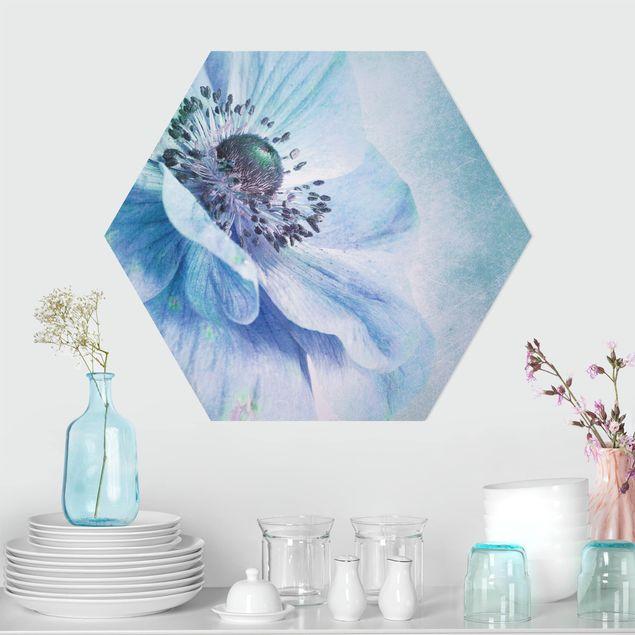 Hexagon Bild Forex - Blüte in Türkis