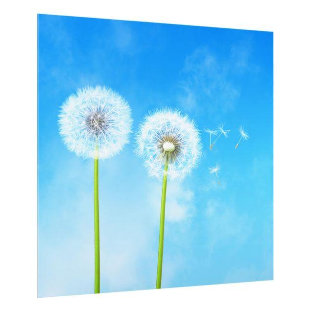 Glas Spritzschutz - Flying Seeds - Quadrat - 1:1