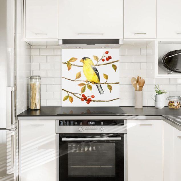 Glas Spritzschutz - Vögel und Beeren - Goldzeisig - Quadrat - 1:1