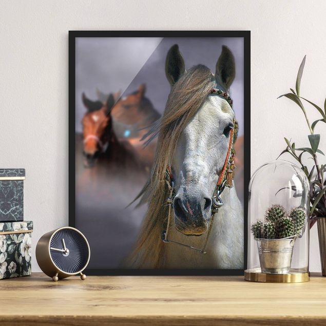 Bild mit Rahmen - Horses in the Dust - Hochformat 3:4