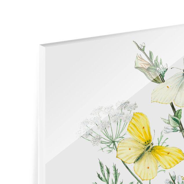 Glas Spritzschutz - Britische Schmetterlinge III - Quadrat - 1:1