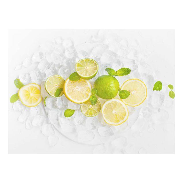 Glas Spritzschutz - Zitrusfrüchte auf Eiswürfel - Querformat - 4:3